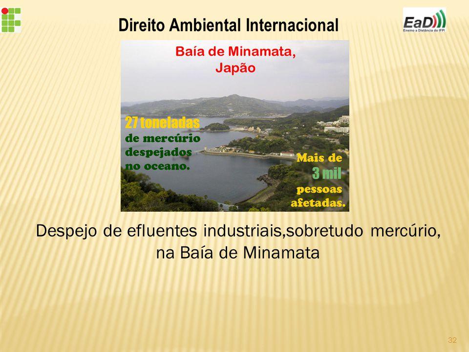 Direito Ambiental Internacional