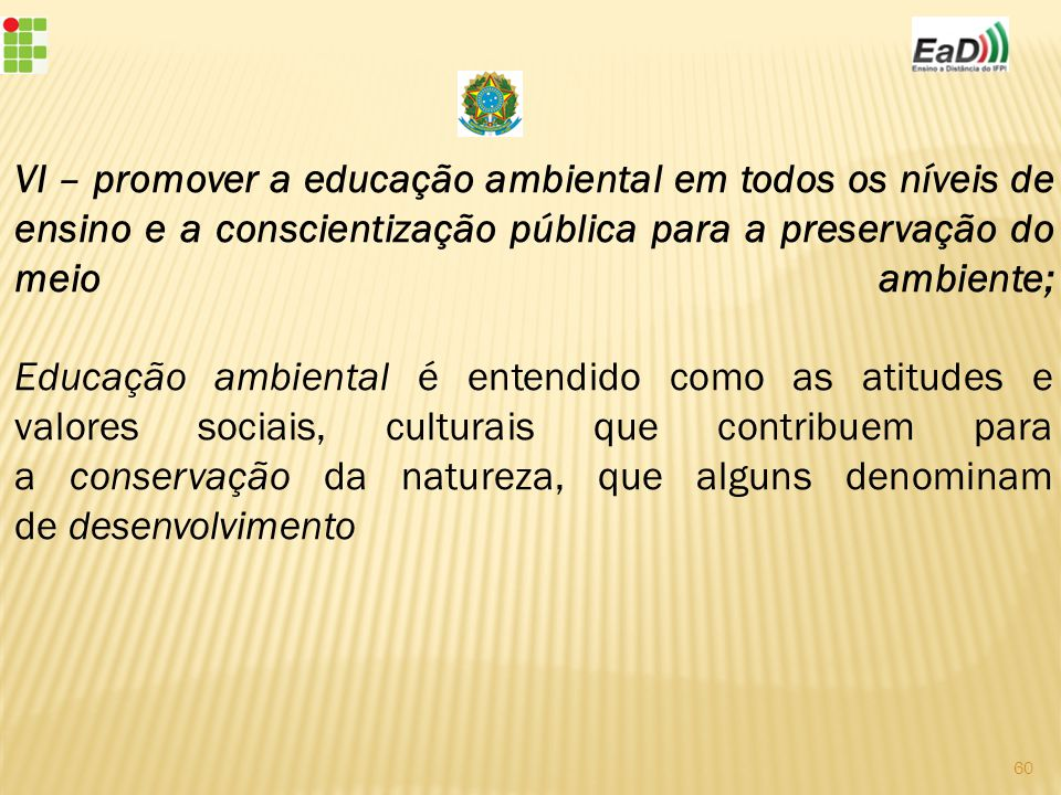 VI – promover a educação ambiental em todos os níveis de ensino e a conscientização pública para a preservação do meio ambiente; Educação ambiental é entendido como as atitudes e valores sociais, culturais que contribuem para a conservação da natureza, que alguns denominam de desenvolvimento