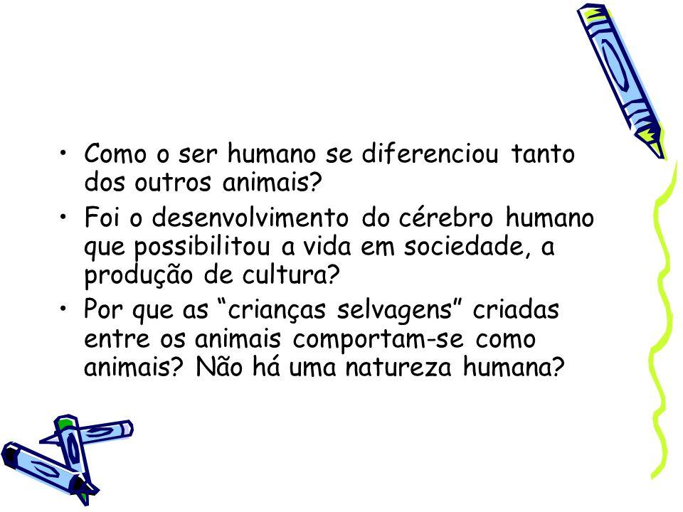 Como o ser humano se diferenciou tanto dos outros animais