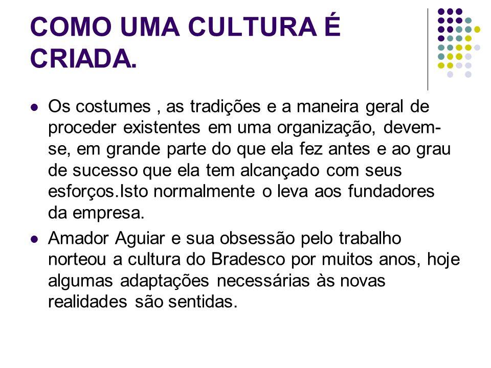COMO UMA CULTURA É CRIADA.