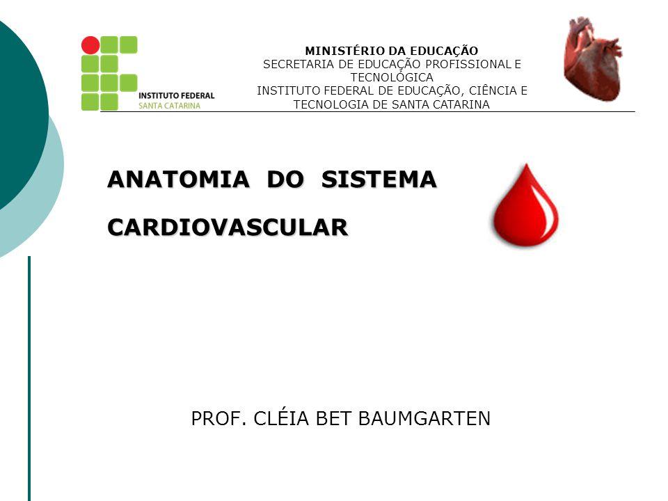 ANATOMIA DO SISTEMA CARDIOVASCULAR PROF. CLÉIA BET BAUMGARTEN
