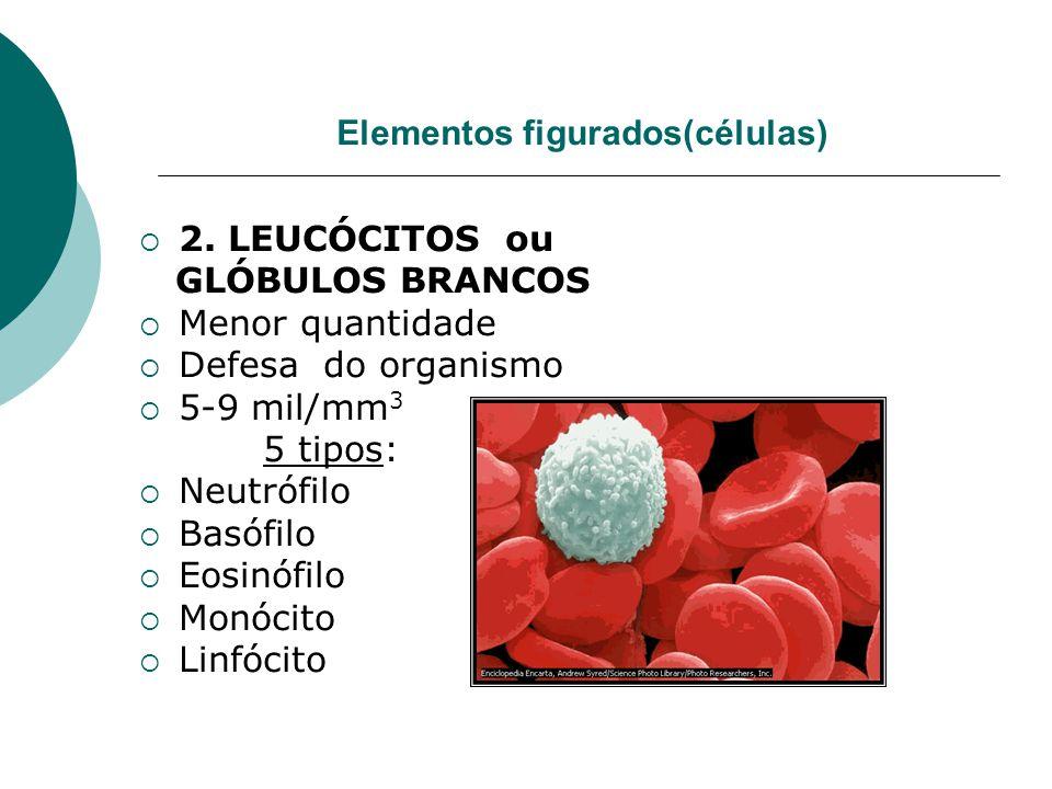 Elementos figurados(células)