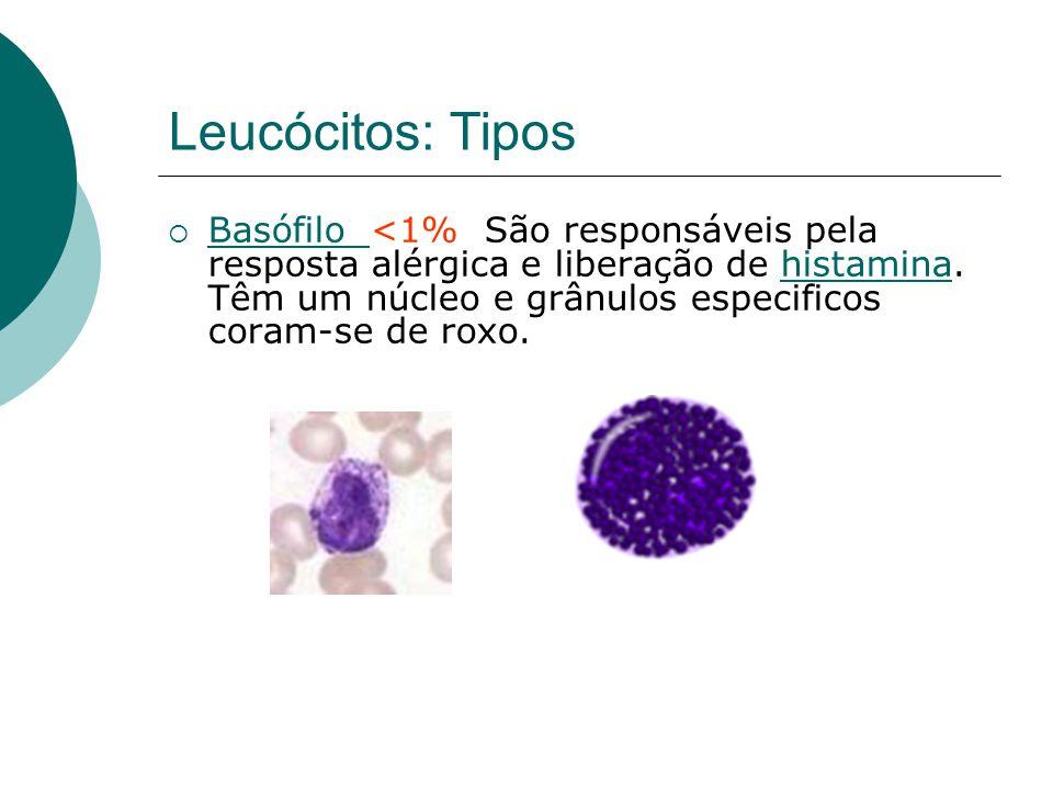 Leucócitos: Tipos