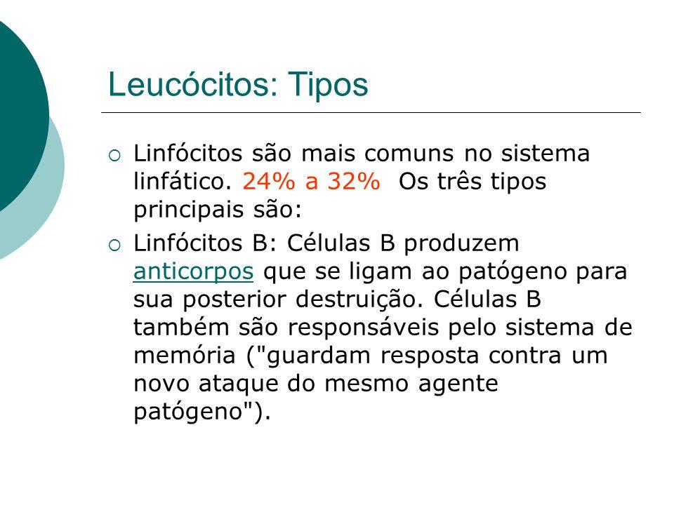 Leucócitos: Tipos Linfócitos são mais comuns no sistema linfático. 24% a 32% Os três tipos principais são:
