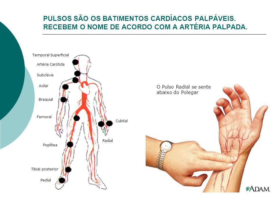 PULSOS SÃO OS BATIMENTOS CARDÍACOS PALPÁVEIS