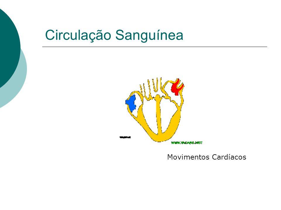Circulação Sanguínea Movimentos Cardíacos