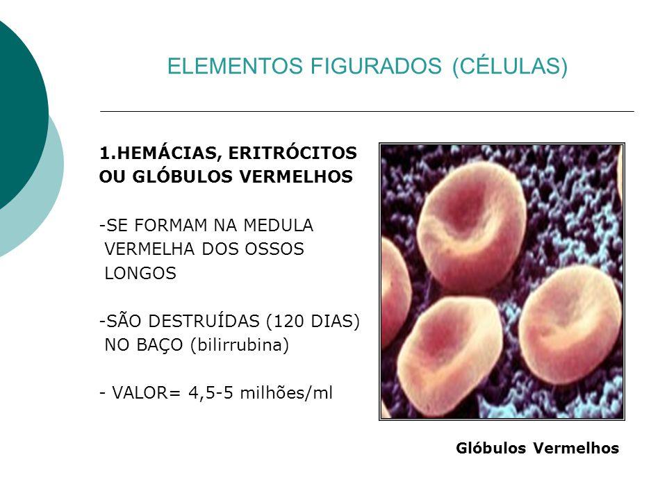 ELEMENTOS FIGURADOS (CÉLULAS)