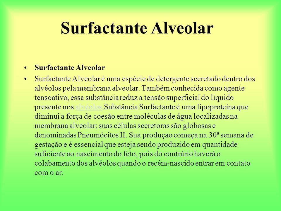 Surfactante Alveolar Surfactante Alveolar