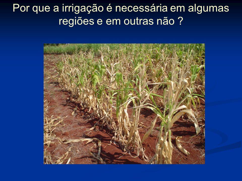 Por que a irrigação é necessária em algumas regiões e em outras não