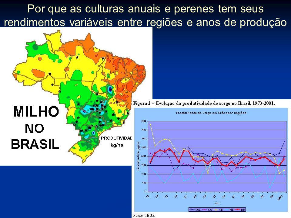 Por que as culturas anuais e perenes tem seus rendimentos variáveis entre regiões e anos de produção