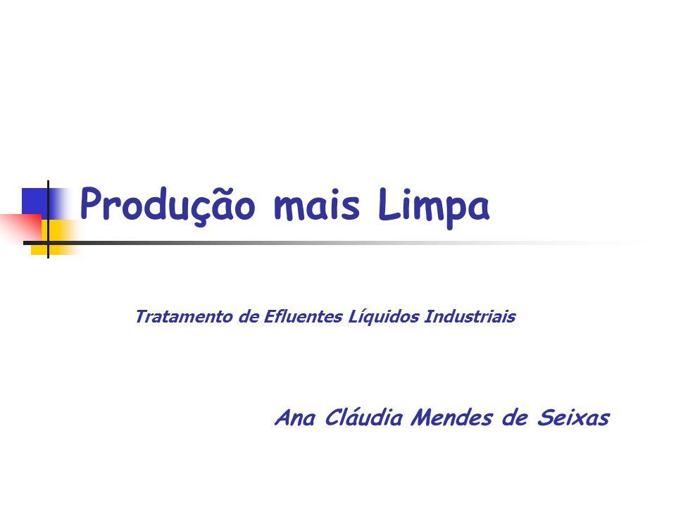 Ana Cláudia Mendes de Seixas