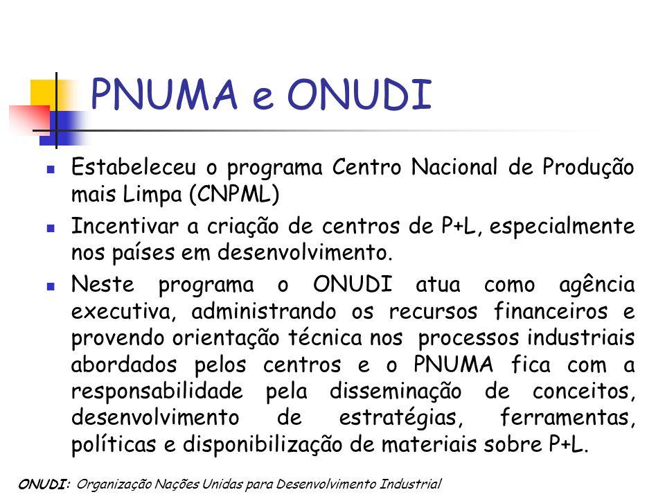PNUMA e ONUDI Estabeleceu o programa Centro Nacional de Produção mais Limpa (CNPML)