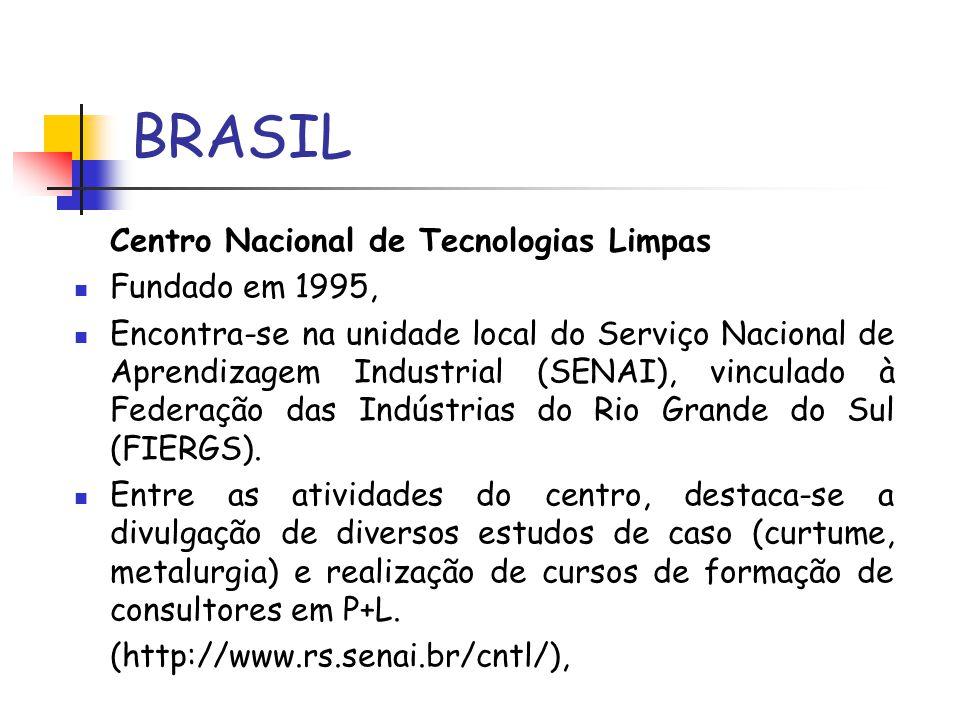 BRASIL Centro Nacional de Tecnologias Limpas Fundado em 1995,
