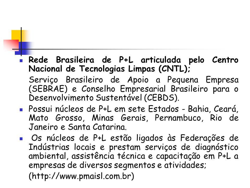 Rede Brasileira de P+L articulada pelo Centro Nacional de Tecnologias Limpas (CNTL);
