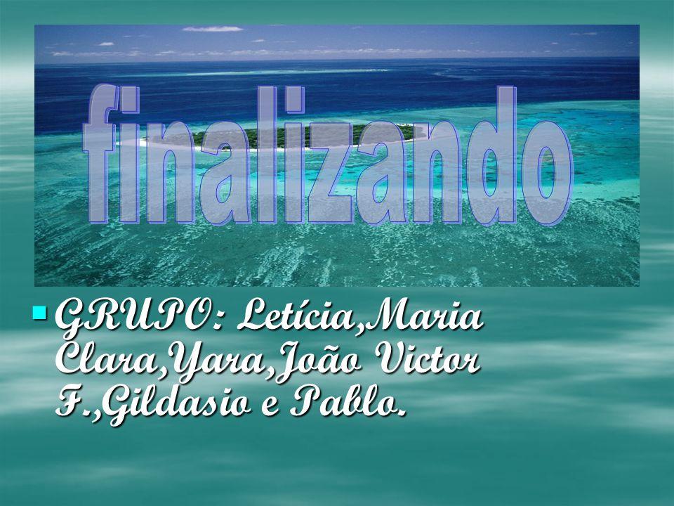 GRUPO: Letícia,Maria Clara,Yara,João Victor F.,Gildasio e Pablo.