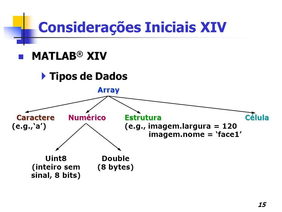 Considerações Iniciais XIV