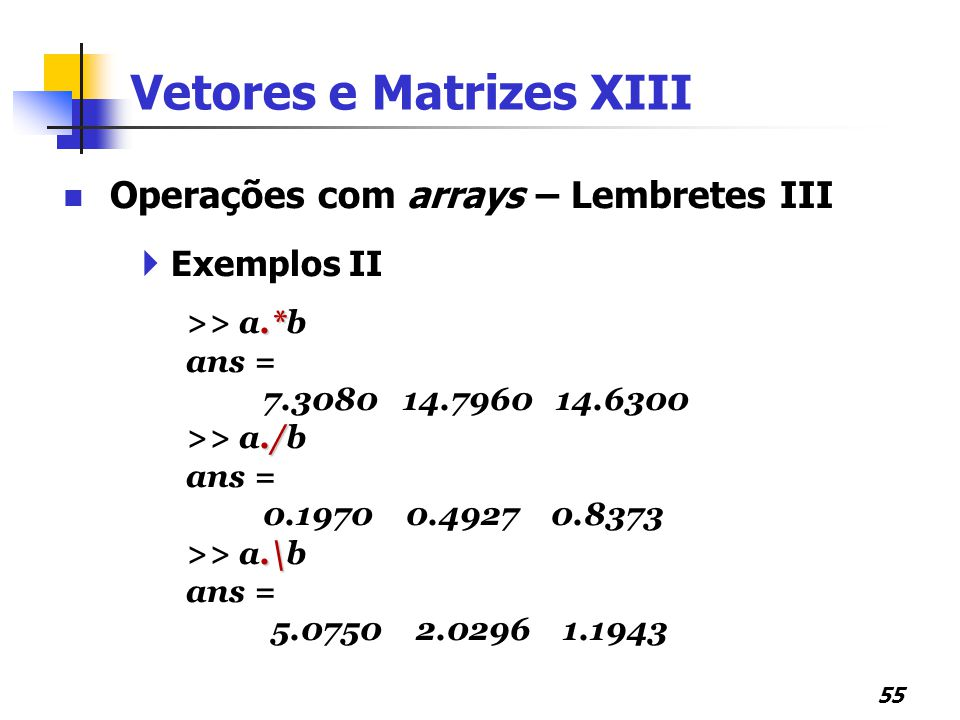 Vetores e Matrizes XIII