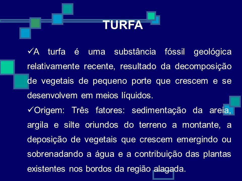 TURFA