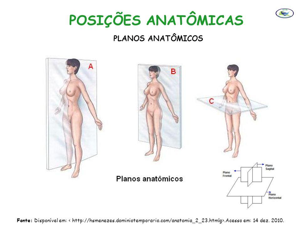 POSIÇÕES ANATÔMICAS PLANOS ANATÔMICOS