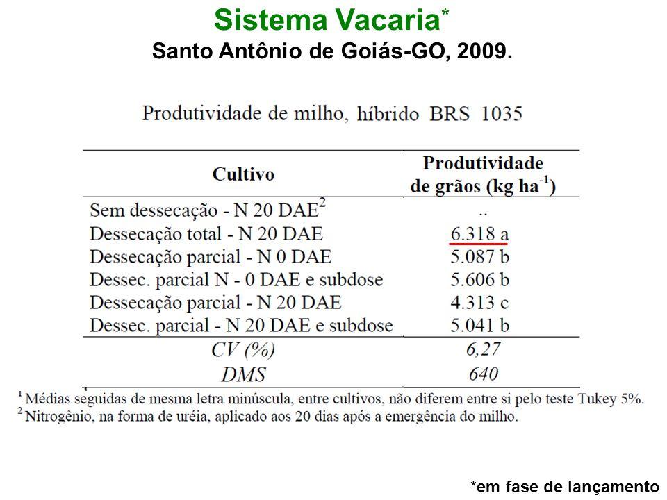 Santo Antônio de Goiás-GO, 2009.