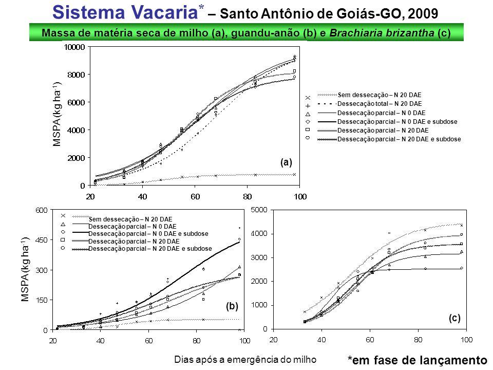 Sistema Vacaria* – Santo Antônio de Goiás-GO, 2009