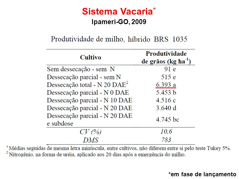 Sistema Vacaria* Ipameri-GO, 2009 *em fase de lançamento