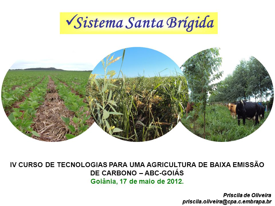 Sistema Santa Brígida IV CURSO DE TECNOLOGIAS PARA UMA AGRICULTURA DE BAIXA EMISSÃO DE CARBONO – ABC-GOIÁS.