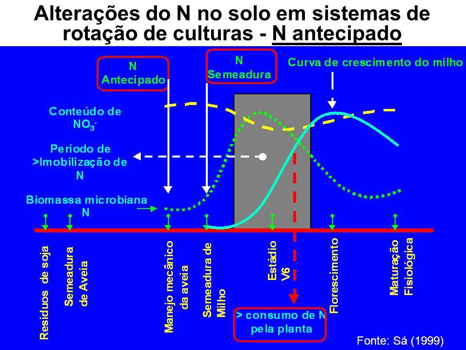 Alterações do N no solo em sistemas de rotação de culturas - N antecipado