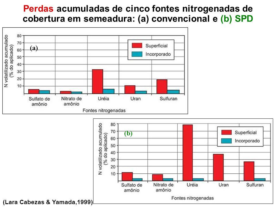Perdas acumuladas de cinco fontes nitrogenadas de cobertura em semeadura: (a) convencional e (b) SPD