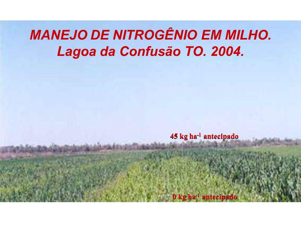 MANEJO DE NITROGÊNIO EM MILHO. Lagoa da Confusão TO. 2004.