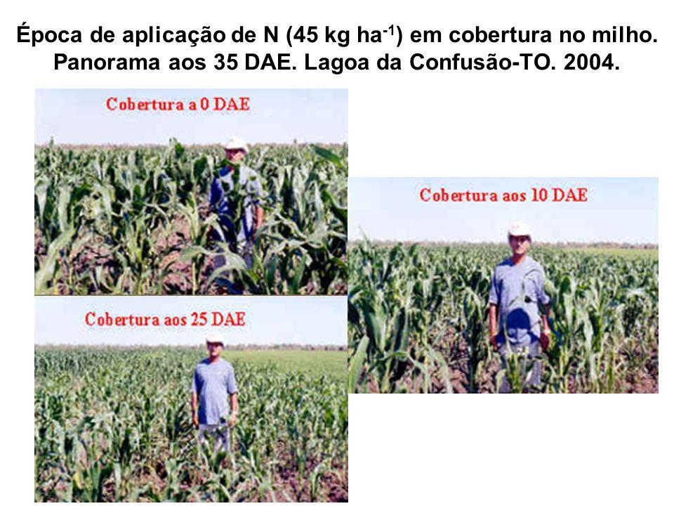 Época de aplicação de N (45 kg ha-1) em cobertura no milho