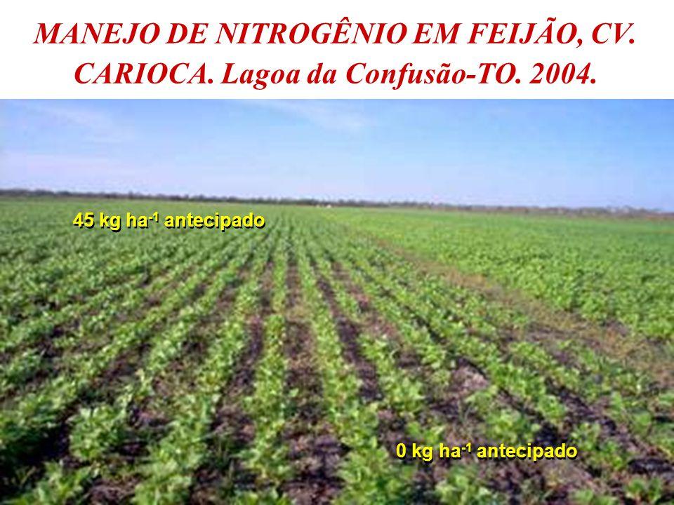 MANEJO DE NITROGÊNIO EM FEIJÃO, CV. CARIOCA. Lagoa da Confusão-TO. 2004.