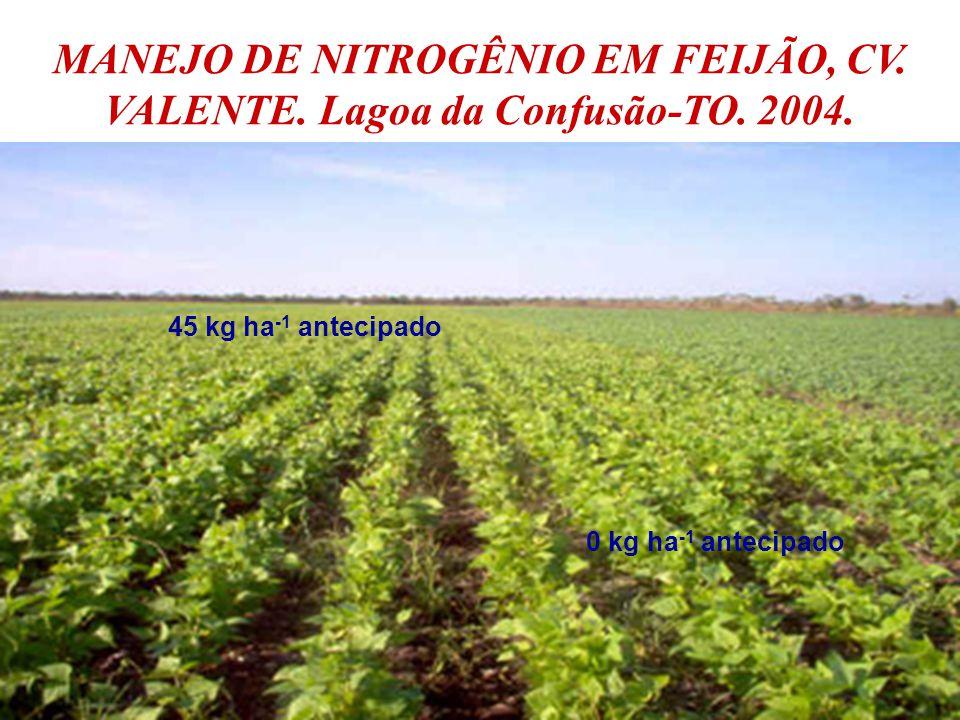MANEJO DE NITROGÊNIO EM FEIJÃO, CV. VALENTE. Lagoa da Confusão-TO. 2004.