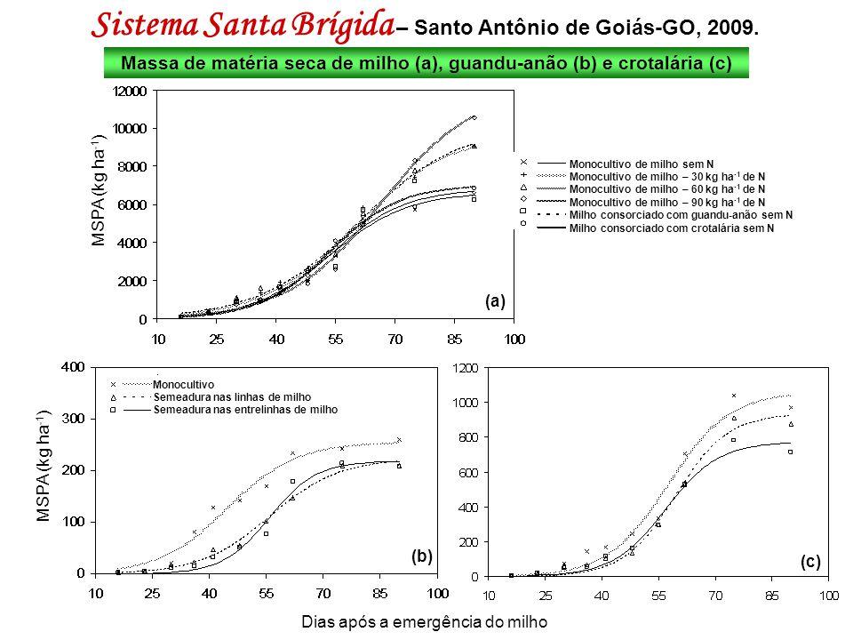 Sistema Santa Brígida – Santo Antônio de Goiás-GO, 2009.