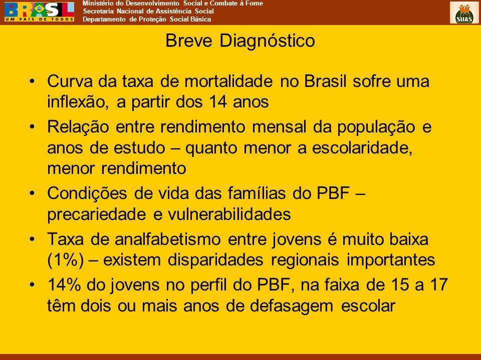 Breve Diagnóstico Curva da taxa de mortalidade no Brasil sofre uma inflexão, a partir dos 14 anos.