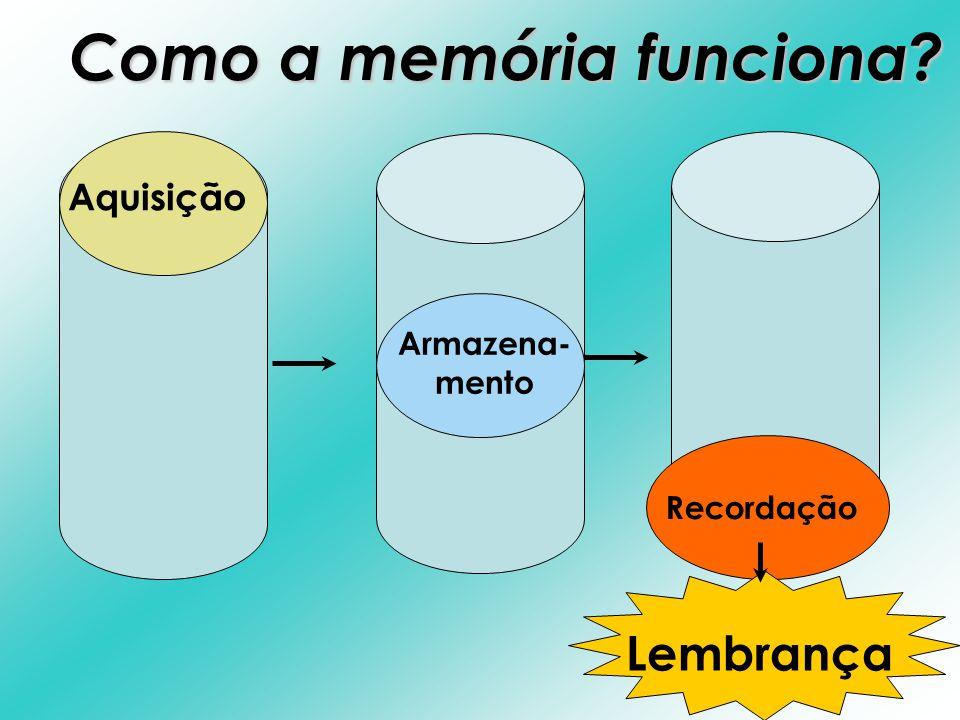 Como a memória funciona