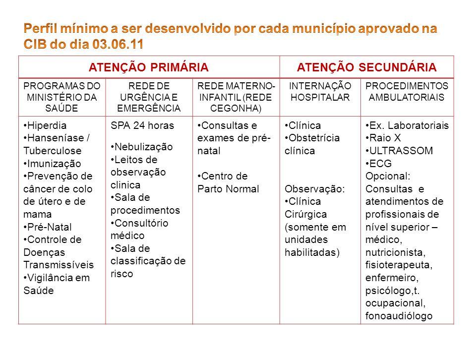 Perfil mínimo a ser desenvolvido por cada município aprovado na CIB do dia 03.06.11
