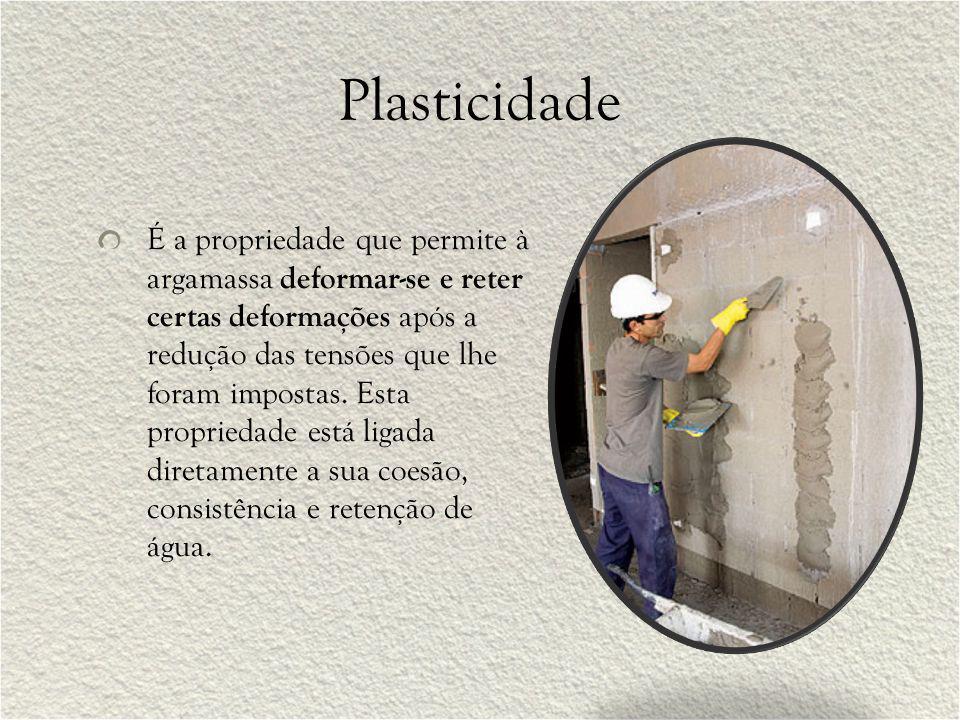 Plasticidade