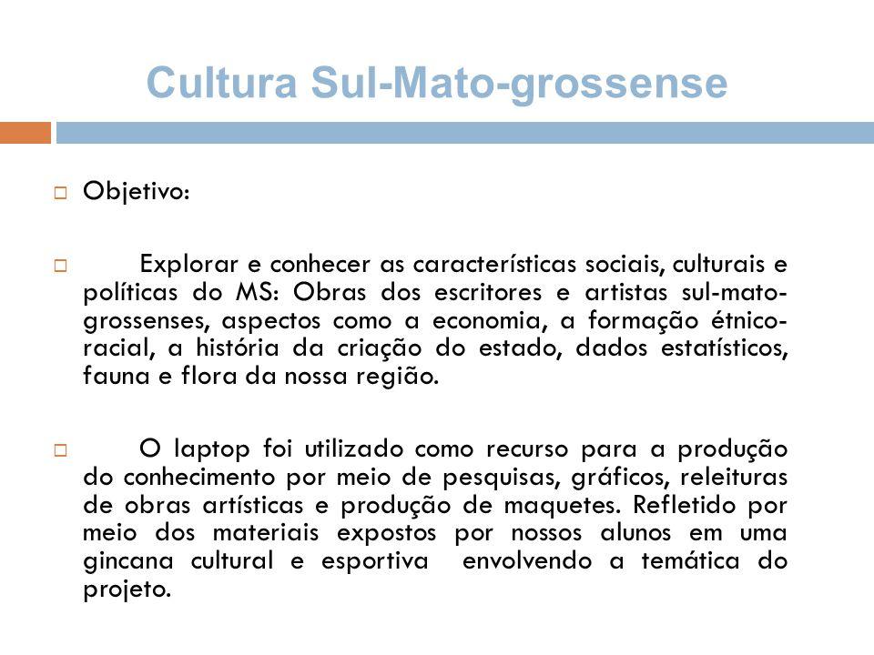 Cultura Sul-Mato-grossense