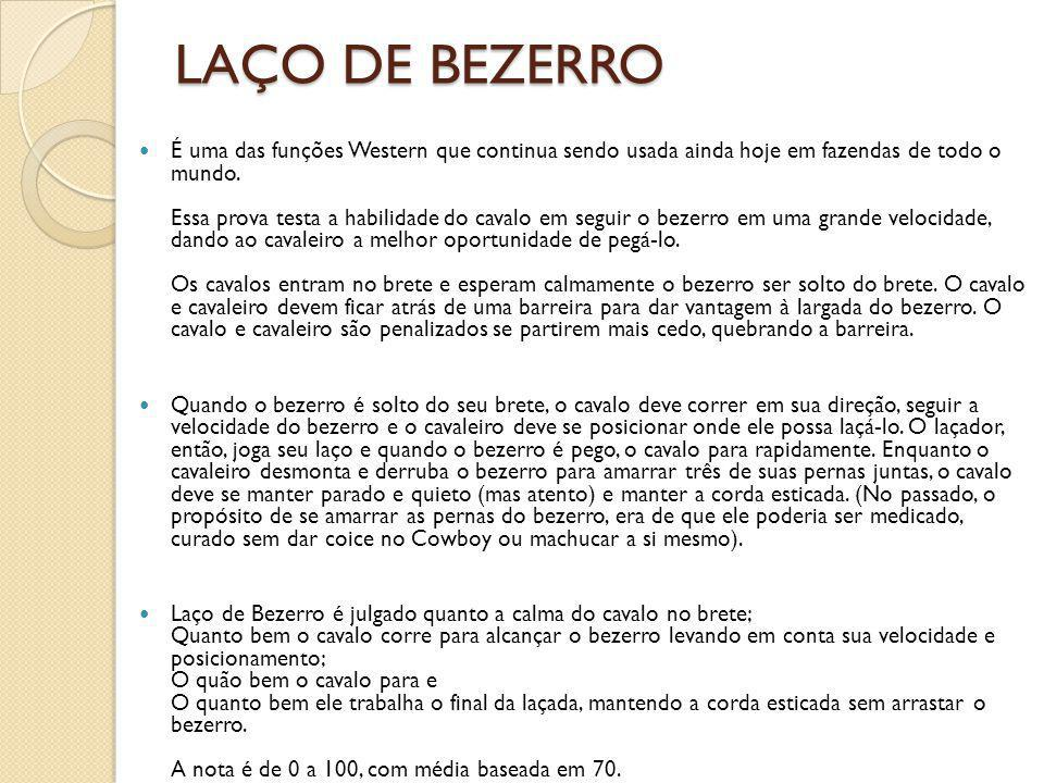LAÇO DE BEZERRO
