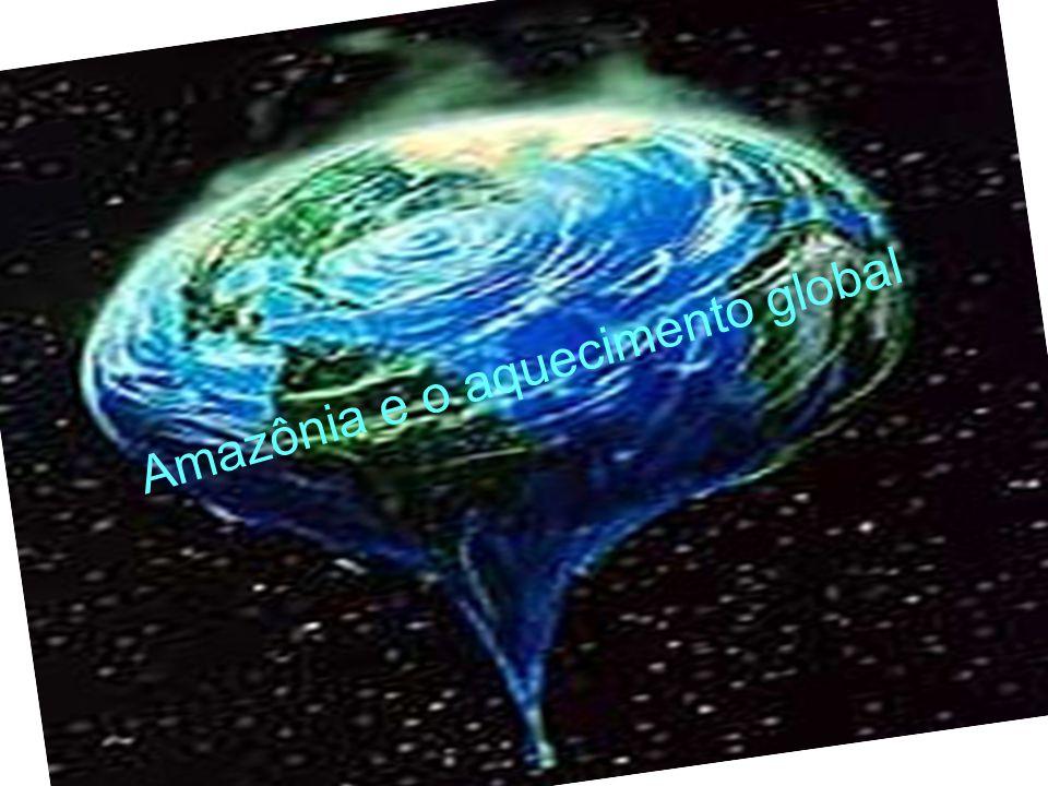 Amazônia e o aquecimento global