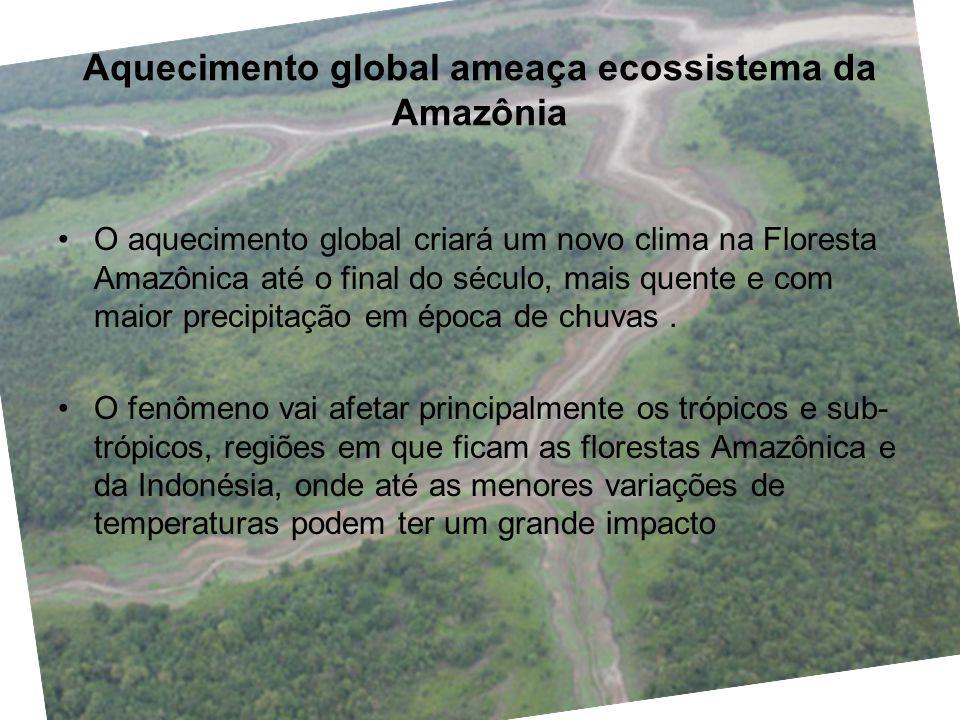 Aquecimento global ameaça ecossistema da Amazônia