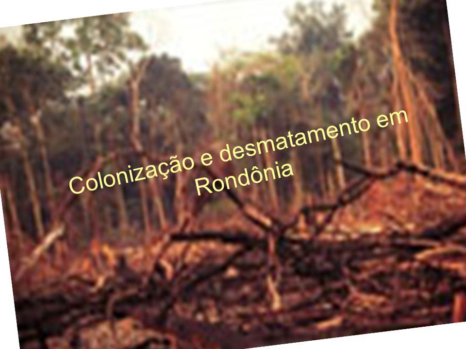 Colonização e desmatamento em Rondônia