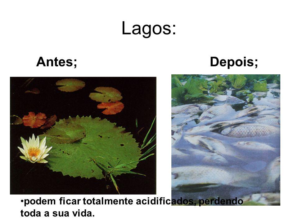 Lagos: Antes; Depois; podem ficar totalmente acidificados, perdendo toda a sua vida.