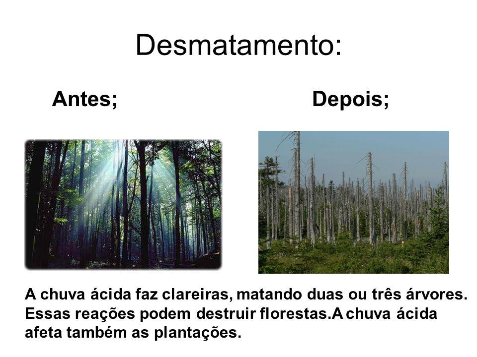 Desmatamento: Antes; Depois;