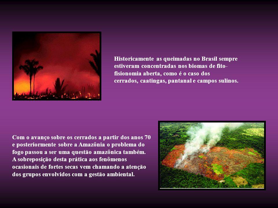Historicamente as queimadas no Brasil sempre estiveram concentradas nos biomas de fito-fisionomia aberta, como é o caso dos cerrados, caatingas, pantanal e campos sulinos.