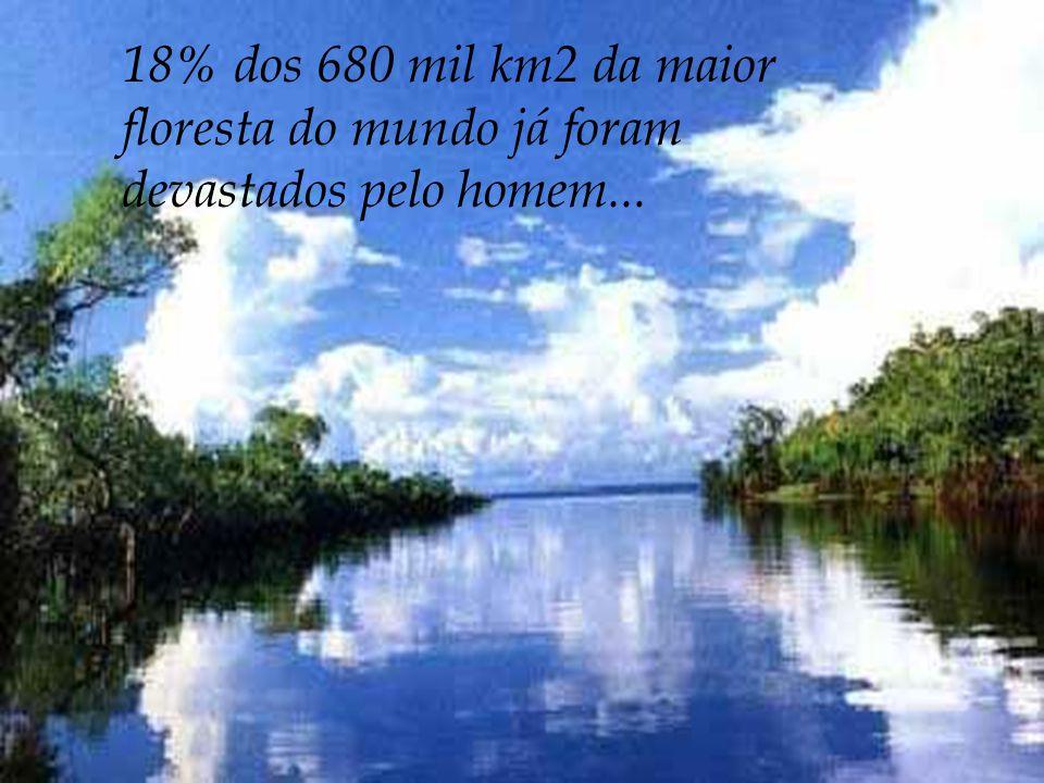 18% dos 680 mil km2 da maior floresta do mundo já foram devastados pelo homem...