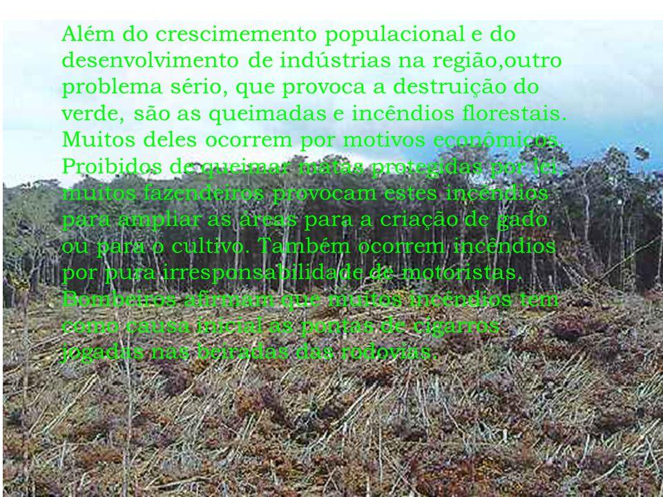 Além do crescimemento populacional e do desenvolvimento de indústrias na região,outro problema sério, que provoca a destruição do verde, são as queimadas e incêndios florestais.