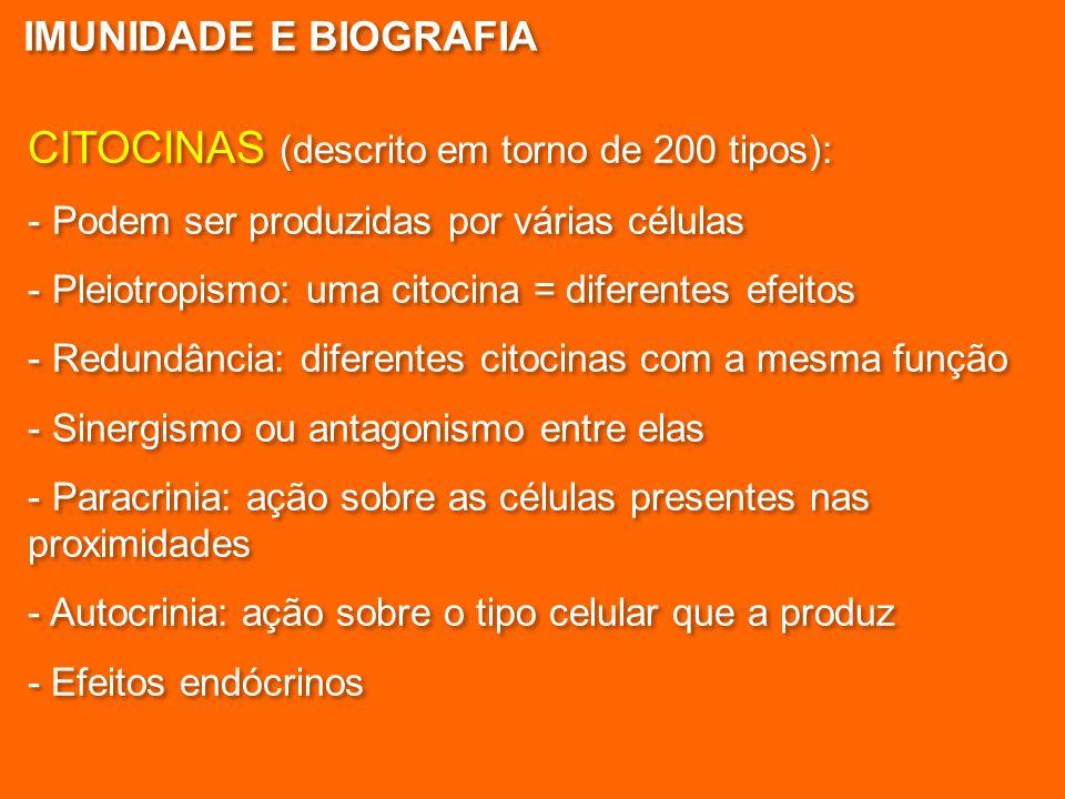CITOCINAS (descrito em torno de 200 tipos):