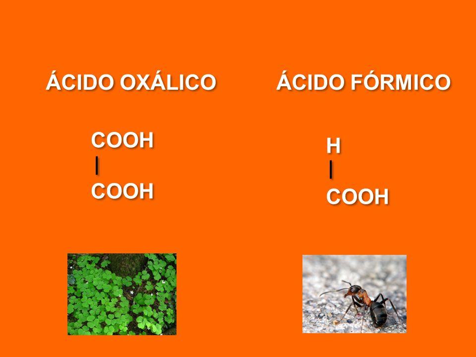 ÁCIDO OXÁLICO ÁCIDO FÓRMICO COOH H COOH